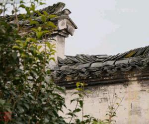 祁门红茶诺贝尔奖颁奖晚宴中的中国茶元素